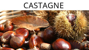 Speciale sulle castagne