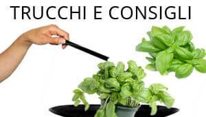 http://www.alimentipedia.it/files/banner/speciale-trucchi-consigli.jpg