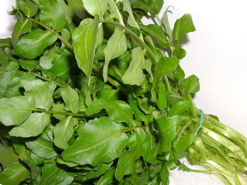 Crescione D Acqua Erba Aromatica Uso In Cucina E