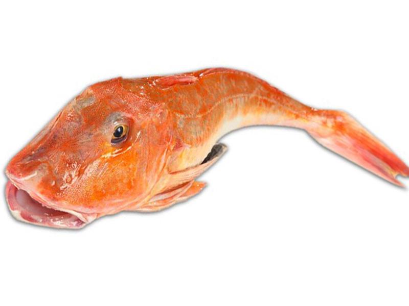 sfilettatore pesce