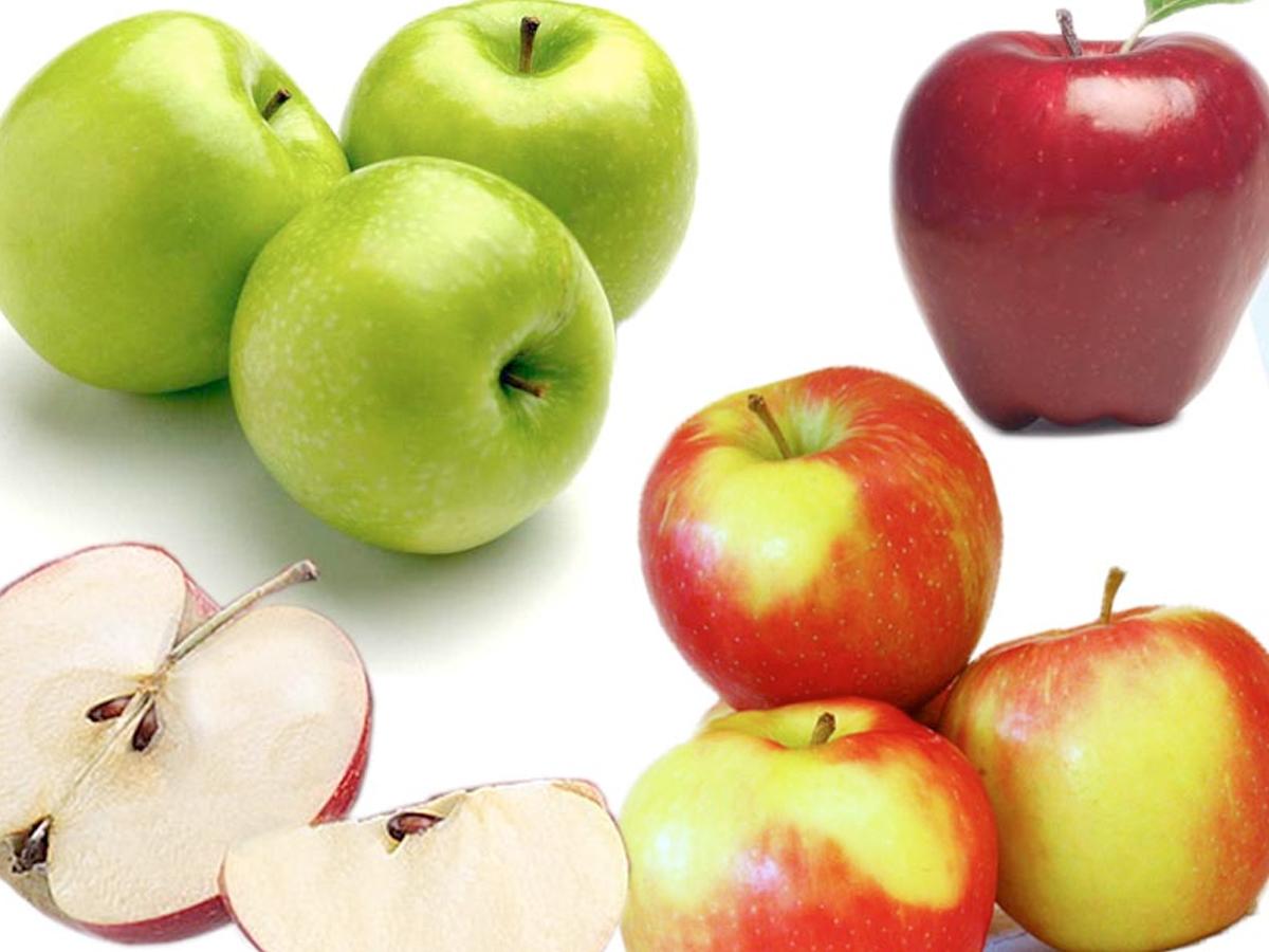 Mela tutto sul frutto pi famoso alimentipedia - Immagini stampabili di mele ...
