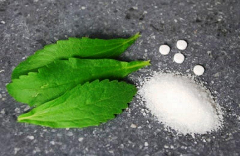 Stevia rebaudiana dolcificante naturale alimentipedia for Stevia pianta