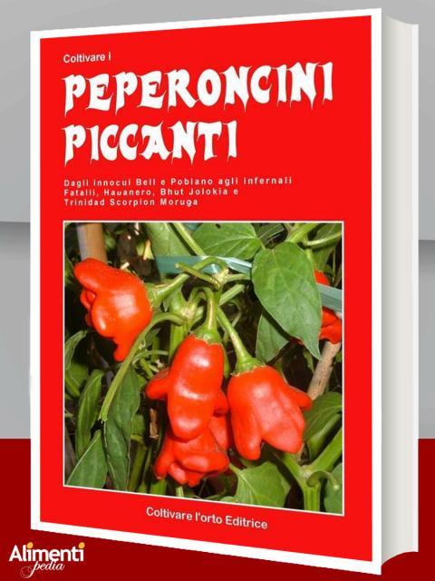 Coltivare i peperoncini piccanti