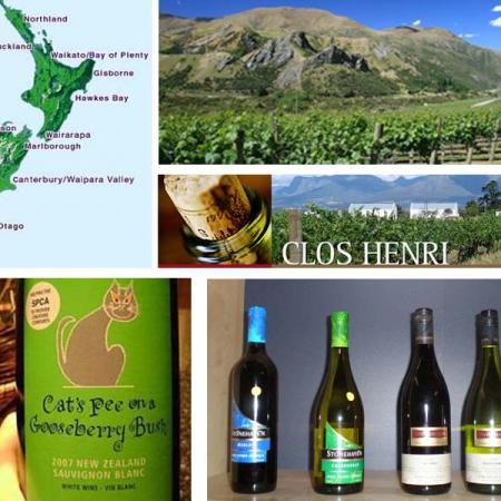 Vini neozelandesi