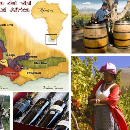 Vini sudafricani