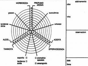 Scheda grafica del Metodo Mercadini