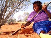 Aborigeno che cerca insetti