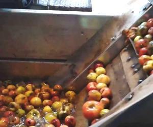 Produzione aceto di mele