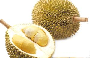 Durian. Frutto consumato in Thailandia