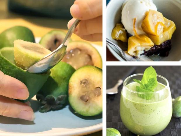 Feijoia, guavasteen, pinapple guava