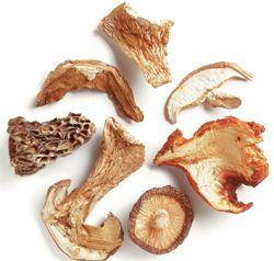 Funghi essiccati