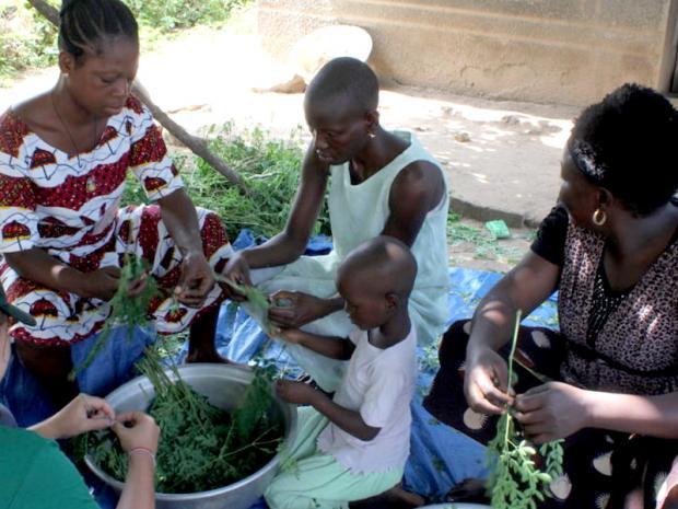 Africani che preparano foglie di Moringa