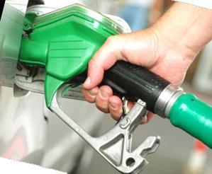 Olio di colza per biodiesel