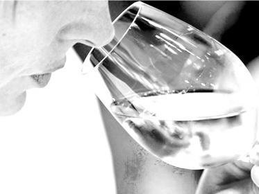 Degustazione del vino: profumi, odori e aromi