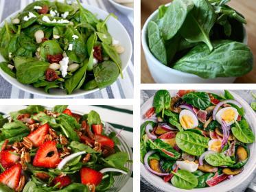 Spinaci in insalata