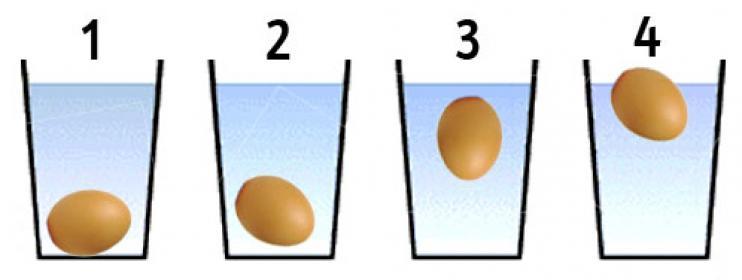 Freschezza dell'uovo