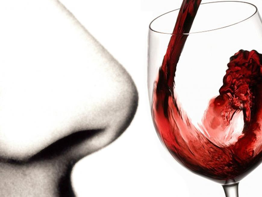 Guida alla degustazione del vino: esame olfattivo