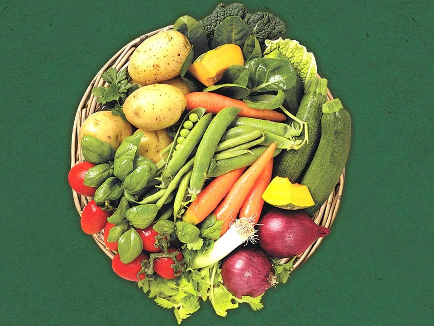 Verdure per minestrone