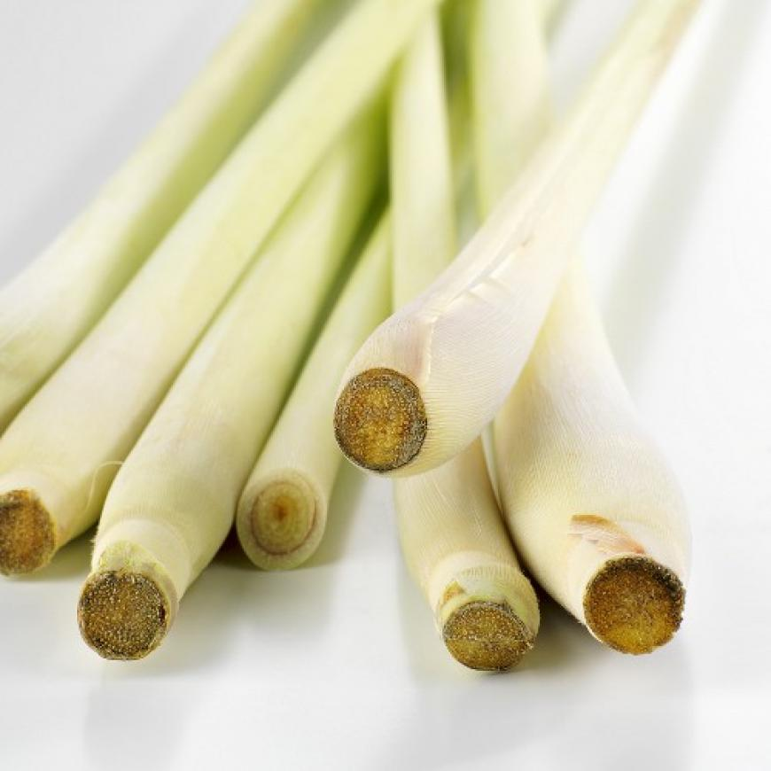 lemongrass, citronella