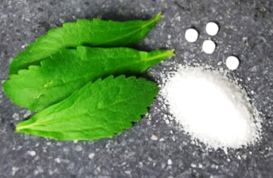 Stevia Rebaudiana, Sweetleaf