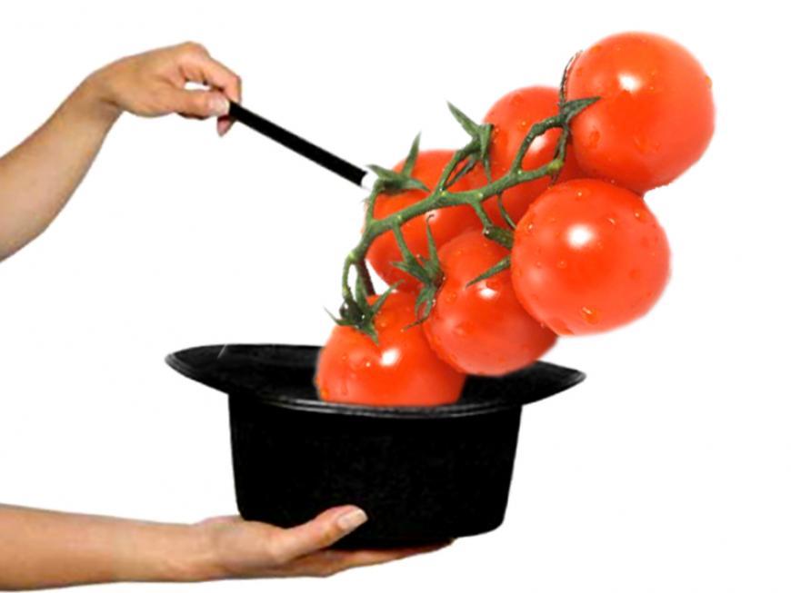 Trucchi e consigli sui pomodori