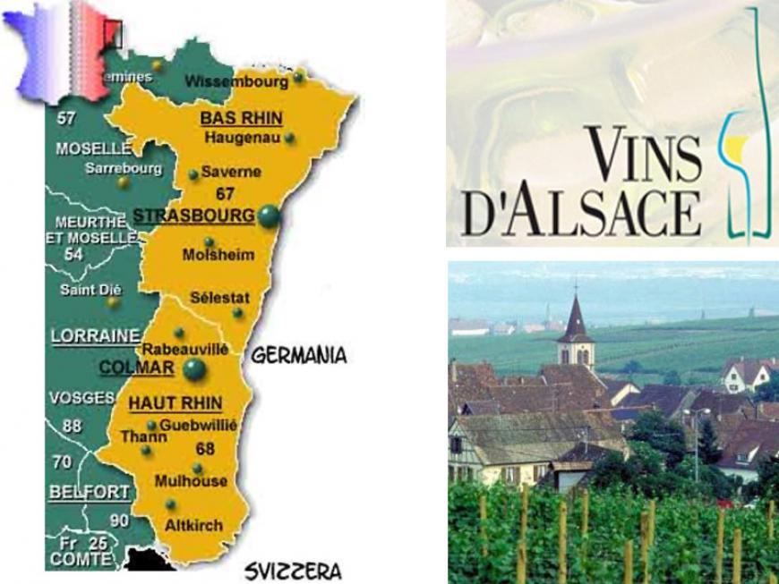Vini francesi dell'Alsazia