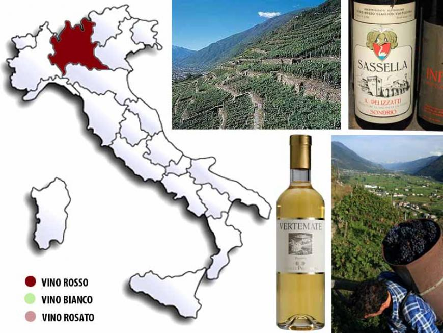 Vini della Valchiavenna e Valtellina