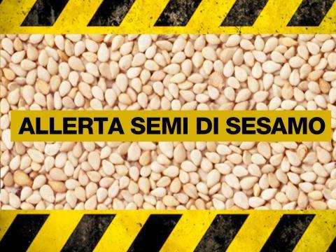 Rischio chimico per semi di sesamo. Richiamati vari prodotti che li contengono