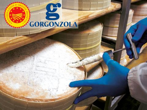 Covid-19 infierisce anche sulla produzione del Gorgonzola DOP, in calo del 17%