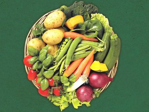 Poco tempo per cucinare? 4 consigli per una dieta varia ed equilibrata